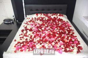 лепестки роз на кровате